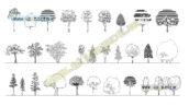 بلاک اتوکد درختان برگریز