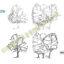 بلاک اتوکد اسکیس درخت