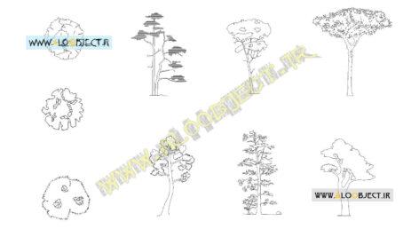 بلاک اتوکد انواع درخت کاج