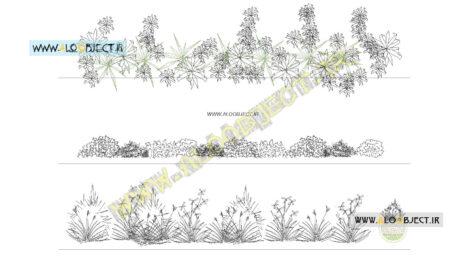 بلاک اتوکد انواعی گیاه