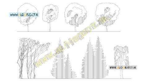بلاک اتوکد اسکیس درختان