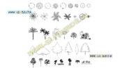 بلاک اتوکد درختان-نما-پلان