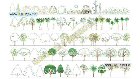 بلاک اتوکد درخت نمای-جانبی